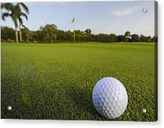 Golf Ball On Golf Course Acrylic Print by M Cohen