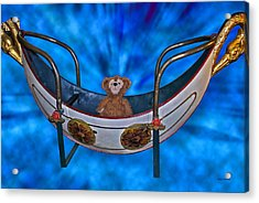 Gondola Bear Acrylic Print by Thomas Woolworth