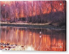 Acrylic Print featuring the photograph Gone Fishin' by Julie Clements