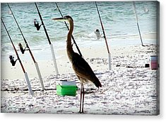 Gone Fishing Acrylic Print by Debra Forand