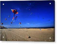 Gone Flyin Acrylic Print