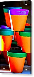 Gone Potty Acrylic Print