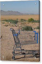 Gone Shopping Acrylic Print by Sanda Kateley