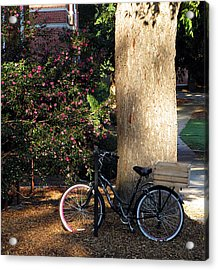 Gone To Class Acrylic Print by Greg Simmons