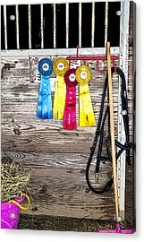 Good Day At The Event Acrylic Print