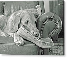 Good Day To Be On The Couch With My Slippers Acrylic Print