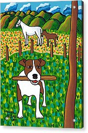 Good Dog Acrylic Print