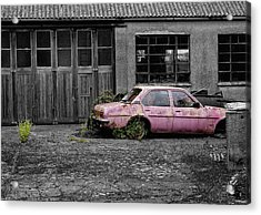Acrylic Print featuring the photograph Good Little Runner by Paul Gulliver