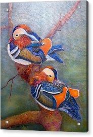 Good Luck Mandarins Acrylic Print by Loretta Luglio