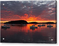 Good Morning Acadia Acrylic Print by Bernard Chen