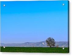 Good Morning  Beautiful World  Acrylic Print by Sotiris Filippou