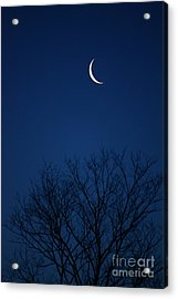 Good Morning Moon Acrylic Print by Jay Nodianos