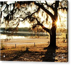 Good Morning Mossy Oak Acrylic Print