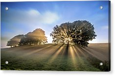 Good Morning To A Great Day. Acrylic Print