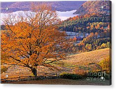 Acrylic Print featuring the photograph Good Morning Vermont by Alan L Graham