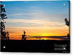 Good Night Spokane Acrylic Print by Chris Heitstuman