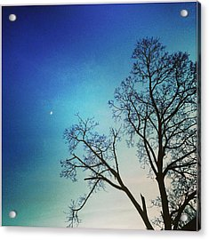 Goodnight Moon Acrylic Print