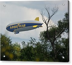 Goodyear Blimp Tree Top Flyer Acrylic Print