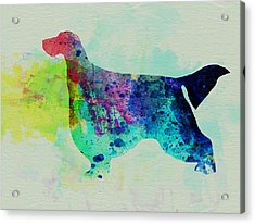 Gordon Setter Watercolor Acrylic Print