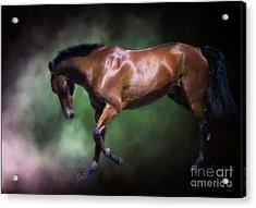 Gorgeous George Acrylic Print by Wobblymol Davis
