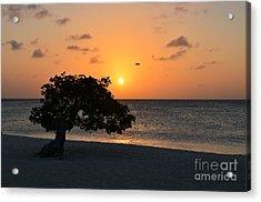 Gorgeous Sunset Acrylic Print