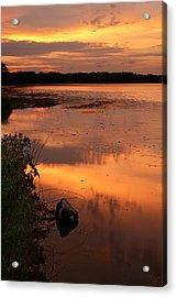 Gorton Pond Warwick Rhode Island Acrylic Print by Lourry Legarde