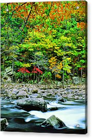 Goshen Pass And Maury River Acrylic Print by Bijan Pirnia