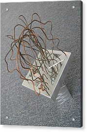 Acrylic Print featuring the sculpture Gosspis by Tony Murray