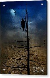 Gothic Landscape  Acrylic Print by Andrea Kollo
