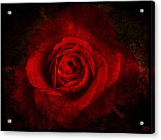 Gothic Red Rose Acrylic Print by Absinthe Art By Michelle LeAnn Scott