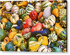 Gourds And Pumpkins At The Farmers Market Acrylic Print