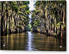 Government Ditch Acrylic Print by Lana Trussell