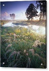 Grab Some Grass Acrylic Print by Ray Mathis