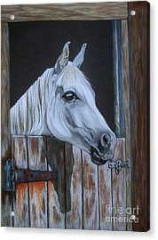 Grace At The Stable Door Acrylic Print by Yvonne Johnstone