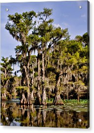 Grace Of Caddo Acrylic Print by Lana Trussell