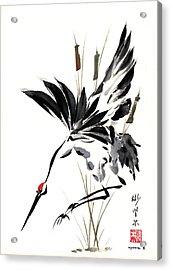 Grace Of Descent Acrylic Print