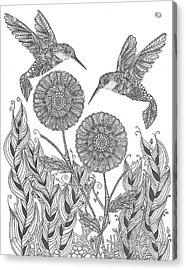Graceful Humming Birds Acrylic Print