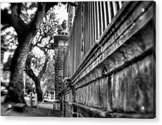 Graceful Old Oak And Fence Two Acrylic Print by Andrew Crispi