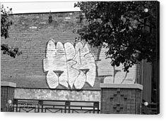 Acrylic Print featuring the photograph Graffiti Nyc by Ann Murphy