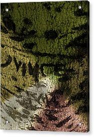 Graffiti 3 Acrylic Print