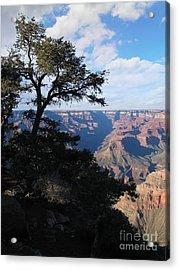Grand Canyon Afternoon Acrylic Print by Stu Shepherd