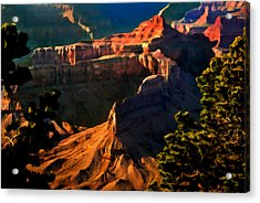 Grand Canyon At Sunset Acrylic Print by Bob and Nadine Johnston
