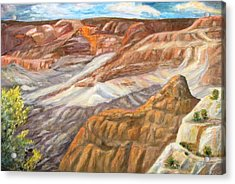 Grand Canyon Acrylic Print by Caroline Owen-Doar