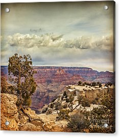 Grand Canyon Acrylic Print by Colin and Linda McKie