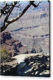 Acrylic Print featuring the photograph Grand Canyon by David S Reynolds