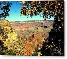 Grand Canyon Framed By Nature Acrylic Print by John Potts