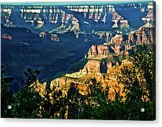 Acrylic Print featuring the photograph Grand Canyon  Golden Hour On Angel Point by Bob and Nadine Johnston