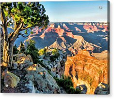 Grand Canyon Ledge Acrylic Print
