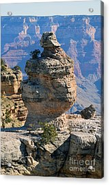 Grand Canyon National Park Cap Rock Formation Acrylic Print by Shawn O'Brien
