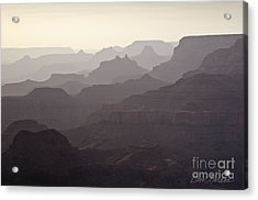Grand Canyon No. 3 Acrylic Print by David Gordon